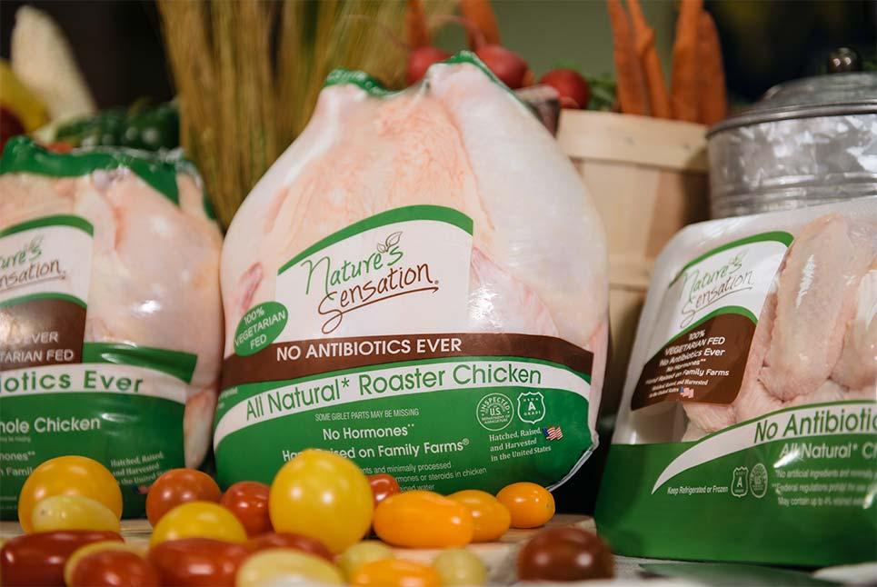 Our Chicken - Allen Harim